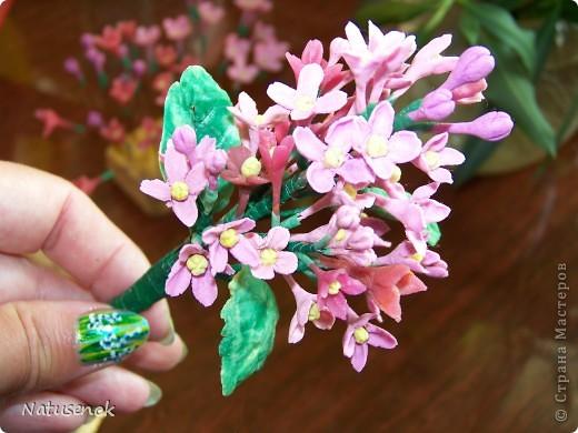 ну что ж, вот они мои первые робкие шаги в освоении холодного фарфора. Конечно скромные цветочки не идут ни в какое сравнение с работами наших мастериц, но я все таки решила похвастаться (даже не стала плетенку лаком покрывать, вот как похвастаться захотелось моим разношерстным букетиком...)  фото 5