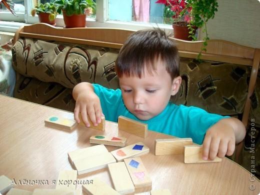 Давно хотела купить ребёнку деревянные доминошки. Всё дело не доходило. фото 1