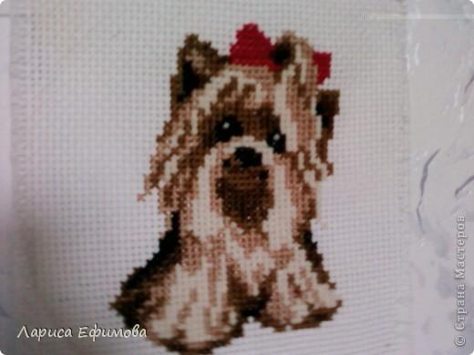 Я вышиваю крестиком фото 1