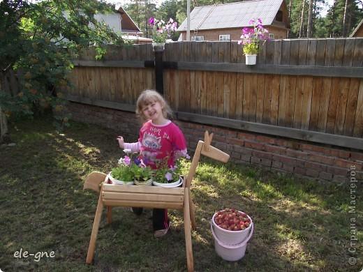 вот такую нам папа сделал садовую лошадку, кашпо под цветы. подсмотрели в интернете. фото 1