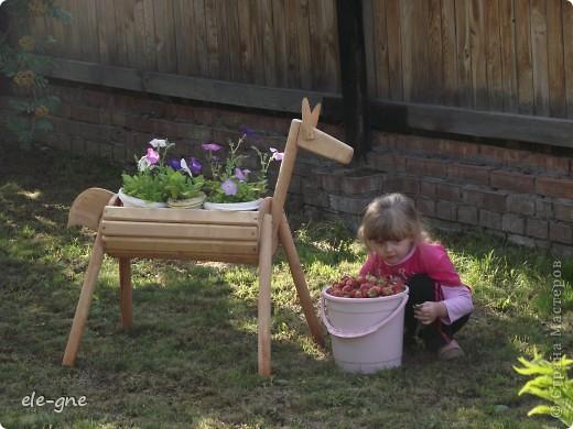 вот такую нам папа сделал садовую лошадку, кашпо под цветы. подсмотрели в интернете. фото 2