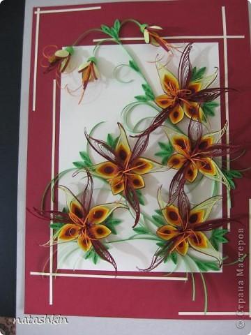 """Здравствуйте, дорогие мастерицы. Вот  выставляю  на  ваш суд  картину, которую я назвала """"Неизвестные"""". Как-то вечером  крутила бумажки  и накрутила  такой  цветик,  а  мужу понравилось и он попросил сделать ему  картину  с  такими  цветами. Ну и  вот...   только что  закончила.  фото 1"""