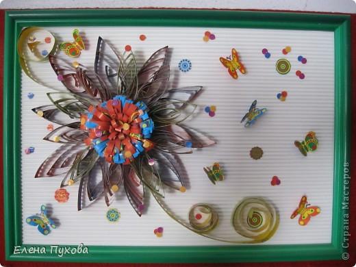 Бабочки слетелись на цветок... фото 1