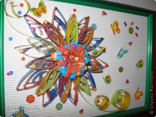Бабочки слетелись на цветок... фото 2