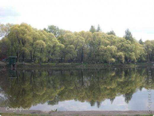 капли воды фото 8