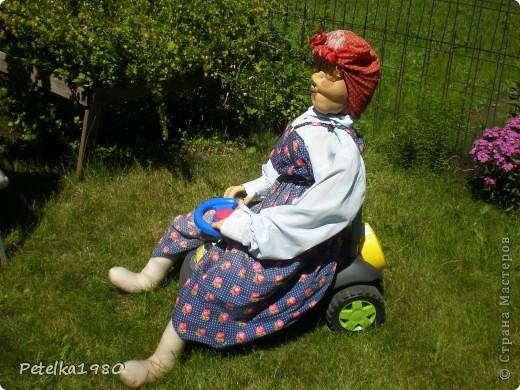Живет на нашей даче такая вот помошница - мы зовём её бабой Гагой, с утра и до позднего вечера она вся в делах и заботах. Пока не очень жарко пасёт на лужку двух гусяток)) фото 2