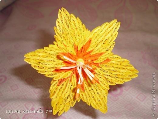насмотрелась на красивые лилии и решила попробовать сделать такой цветочек. фото 2