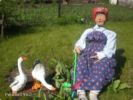 Живет на нашей даче такая вот помошница - мы зовём её бабой Гагой, с утра и до позднего вечера она вся в делах и заботах. Пока не очень жарко пасёт на лужку двух гусяток)) фото 1