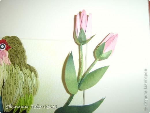 Здравствуйте! На сегодняшний  жаркий день все цветы мне надоели(помните детскую игру....),  и я решила перейти к фауне. Представляю вашему вниманию неразлучника ,сидящего на цветущей ветке южноафриканского каштана. Цветок получился объемный и достаточно необычный.А вот попугайчик плоский. Никак не могла придумать,как сделать его объемным.....Если кто знает секрет.поделитесь.пожалуйста. фото 4
