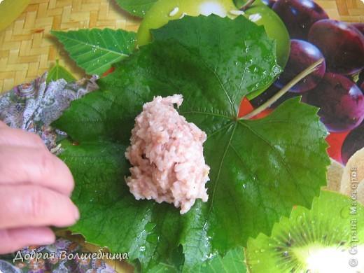 Это блюдо я готовлю много лет. Виноград сейчас растет у многих на даче и листья не проблема. Нам понадобится: фарш мясной , рис отварной, специи ( чеснок, лук, имбирь, перец), орешки ( в первоисточнике были кедровые, но со временем я стала заменять на фундук (помельчить)) , лимон,морковь, соль .  фото 2