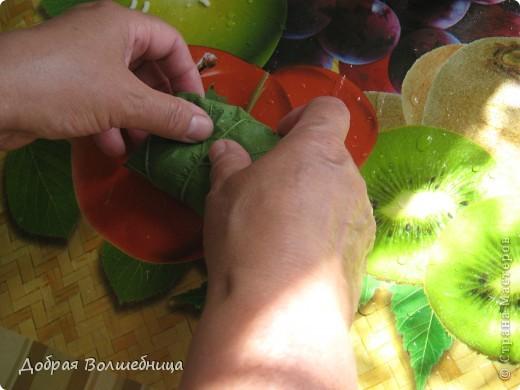 Это блюдо я готовлю много лет. Виноград сейчас растет у многих на даче и листья не проблема. Нам понадобится: фарш мясной , рис отварной, специи ( чеснок, лук, имбирь, перец), орешки ( в первоисточнике были кедровые, но со временем я стала заменять на фундук (помельчить)) , лимон,морковь, соль .  фото 3