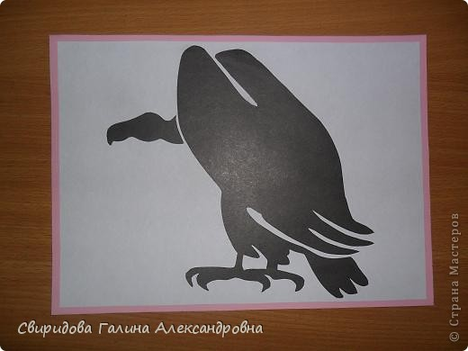 Птицы фото 4