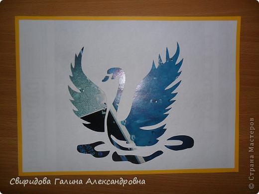 Птицы фото 5