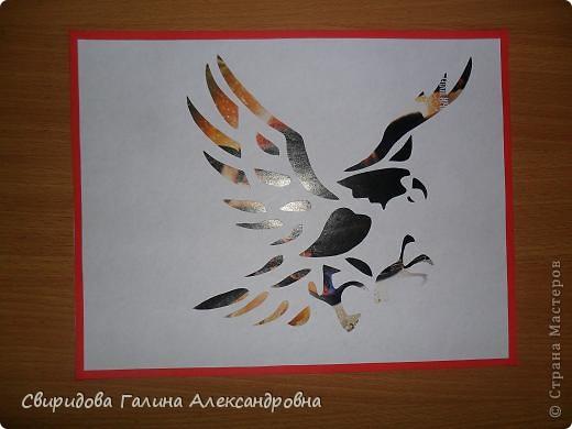 Птицы фото 7