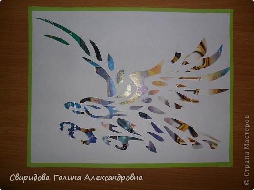 Птицы фото 8
