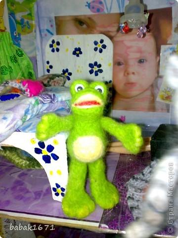 жаб фото 1