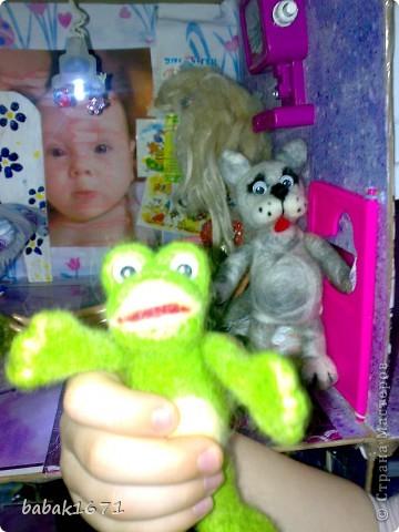 жаб фото 2
