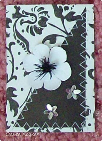 Цветки делала сама, поэтому хочу немного о них расказать, может кому-то пригодится. У меня упрощенный вариант. А вот более профессиональный МК http://asti-n.ya.ru/replies.xml?item_no=358 фото 5