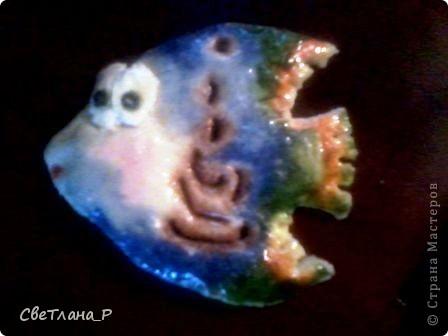 Она должна быть у каждого)) первая рыбка) Заранее извините за качество фотографий. фото 1
