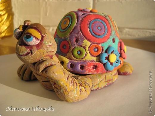 Вот такая черепашка у меня теперь живёт. Спасибо Юлии Русаковой http://stranamasterov.ru/node/55420 фото 9