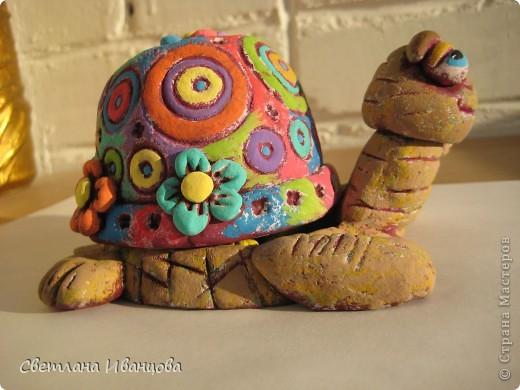 Вот такая черепашка у меня теперь живёт. Спасибо Юлии Русаковой http://stranamasterov.ru/node/55420 фото 10