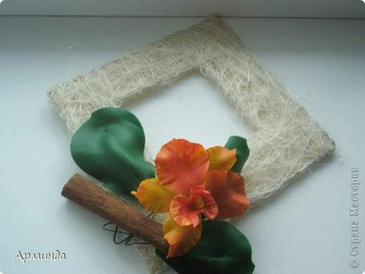 Эксперименты с орхидеями фото 7