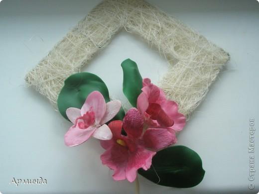 Эксперименты с орхидеями фото 8