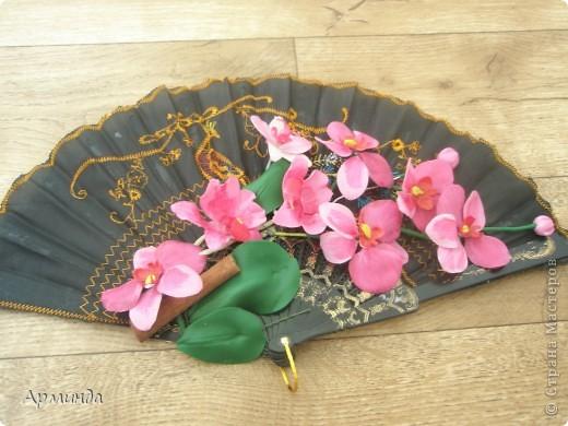 Эксперименты с орхидеями фото 2