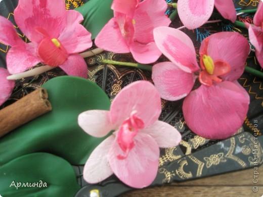 Эксперименты с орхидеями фото 5