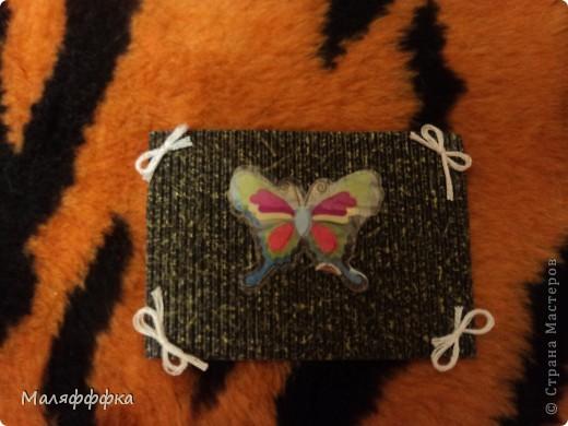 все 4 бабочки  первая выбирает Танюфка-2002 а потом все остальные фото 5
