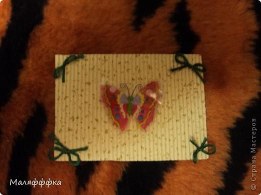 все 4 бабочки  первая выбирает Танюфка-2002 а потом все остальные фото 3