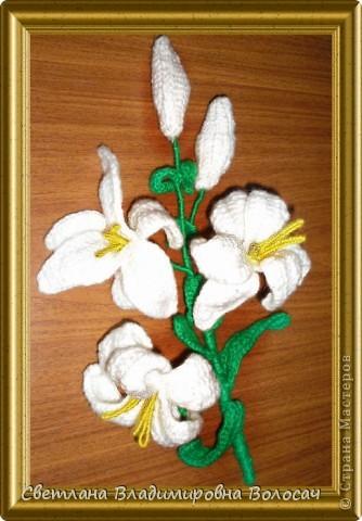 Вот такие цветочки детвора связала еще год, два назад... фото 10