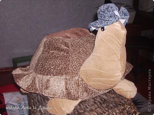Попросили у меня дочки вот таких черепах, две с виду одинаковые , но с разными панцерями. На одной удобно сидеть, а другую удобно под голову ложить фото 2