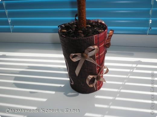 Это кофейное дерево мы сделали в подарок фото 3