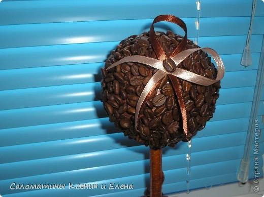 Это кофейное дерево мы сделали в подарок фото 5