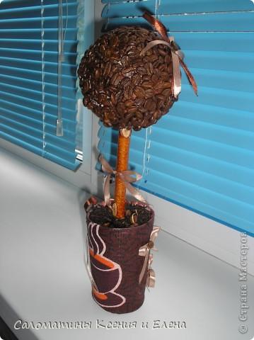 Это кофейное дерево мы сделали в подарок фото 1
