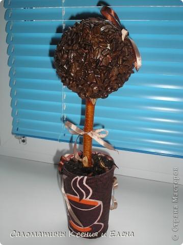 Это кофейное дерево мы сделали в подарок фото 8