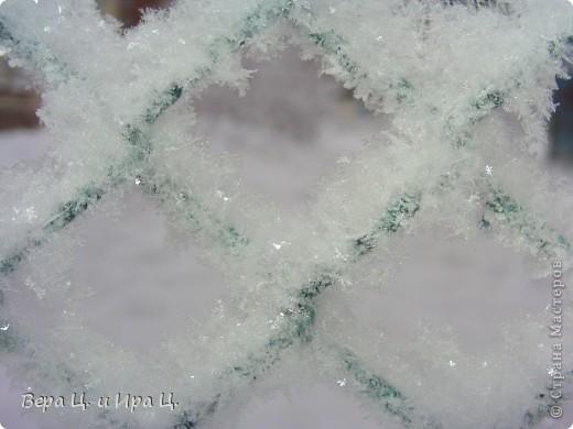 Это НПО (неопознанный ползающий объект). Обнаружен на Кавказе. Подскажите, кто это? фото 19