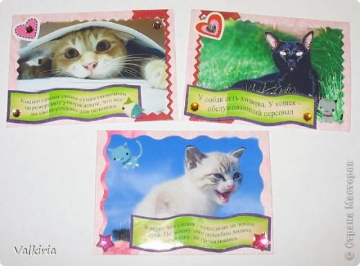 Вы не любите кошек?! Вы просто их готовить не умеете! :) Думаю мир в своих предпочтениях разделился пополам: одни любят собак, другие обожают кошек. Много великих и просто знаменитых людей о кошках написали мудрые мысли... В изготовлении использована глянцевая фотобумага, тутовая и жатая бумага, стразы, пайетки и моя любовь к кошкам. Мудрые мысли на двухстороннем скотче :)  Единственный кредитор - Ульяна Торопова, если понравилось, приглашаю первой к выбору.  Качество фото слегка пострадало, т.к. пользовалась не своим фотиком - мы на даче. Вживую они гораздо милее.  1 - Кошка не против, чтобы Вы спали в своей постели. На самом краешке. 2 - Даже самая маленькая кошка - это произведение искусства. 3 - Если вы понравитесь кошке, она позволит вам стать ее другом, но хозяином - никогда. 1,2,3 - остаются нам и Юле. фото 2