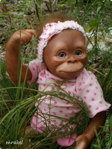 Орангутан Бинди родилась только вчера, и уже  позирует перед объективом. Расписана запекаемыми красками генезис. Глазки вставлены акриловые, когда придёт посылка с материалом, то  поменяем на стекло.  Фоточек пока мало, позже выставлю ещё. фото 12