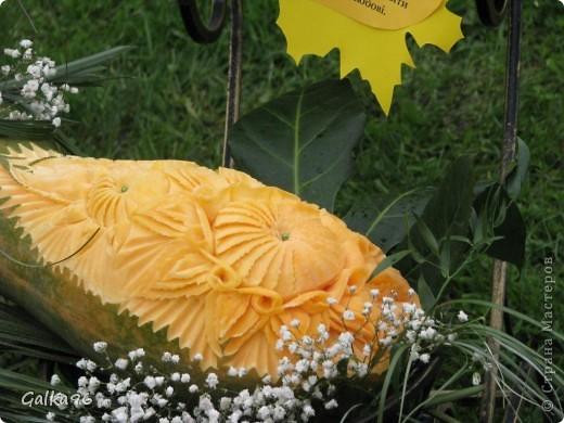 Однажды на виставке цветов... фото 2