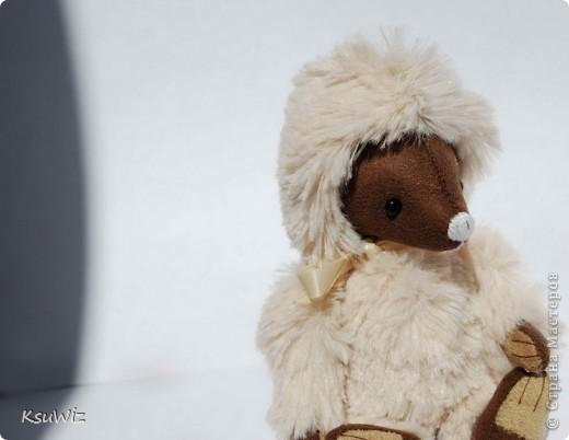 Доброе время суток! Представляю вашему вниманию второго мишку-тедди, сшитого по он-лайн МК Татьяны Скалозуб. фото 1