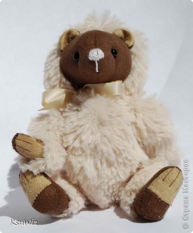 Доброе время суток! Представляю вашему вниманию второго мишку-тедди, сшитого по он-лайн МК Татьяны Скалозуб. фото 6