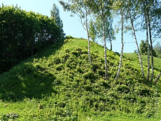 Вид с холма. фото 24