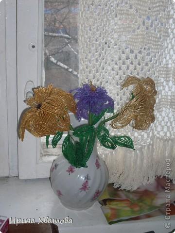 цветы, дерево фото 3