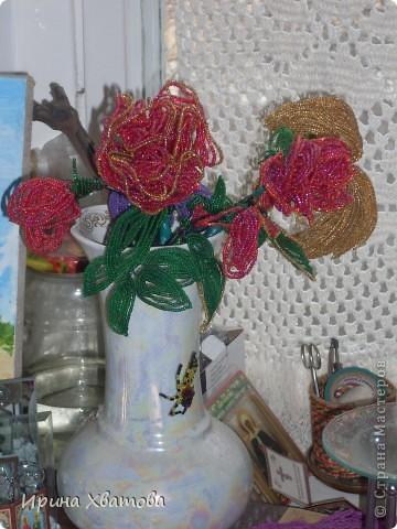 цветы, дерево фото 1
