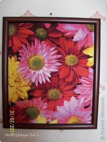 Цветение сакуры  фото 3