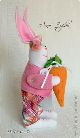 Морковный зай. фото 3