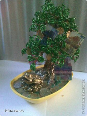 Вот такое денежное дерево сделала для нашей семьи. намучилась с дырочками в монетках, наш казахстанский тенге ни одно сверло не берет, пришлось по-старинке - дюбель и молоток :)))) использовать. фото 2