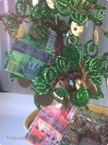 Вот такое денежное дерево сделала для нашей семьи. намучилась с дырочками в монетках, наш казахстанский тенге ни одно сверло не берет, пришлось по-старинке - дюбель и молоток :)))) использовать. фото 6